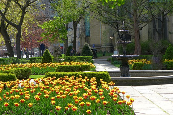 St James Garden Toronto,Canada.: Leica Talk Forum: Digital ...