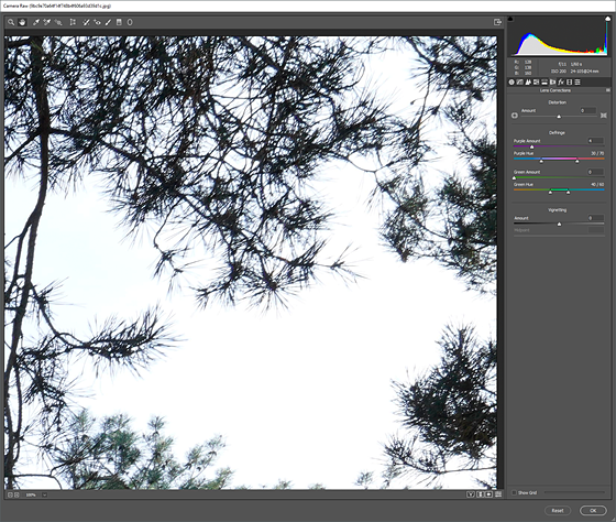 Re: FE 24-105 F4.0 Axial Chromatic aberration: Sony Alpha Full Frame ...