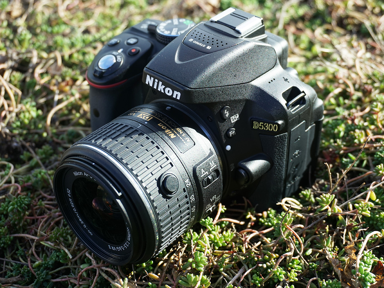 Nikon D5300 Review: Digital Photography Review