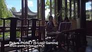 Sony Cyber-shot DSC-RX100 IV 4K video showing S-Log2 gamma