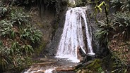 Nikon D5500 waterfall sample video