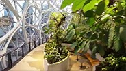Ricoh's Theta V in the Amazon Biospheres
