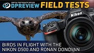Field Test: Birds In Flight with The Nikon D500 and Ronan Donovan
