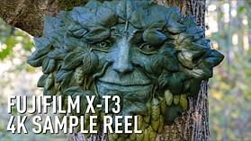 Sculpting 'Green Man' with the Fujifilm X-T3