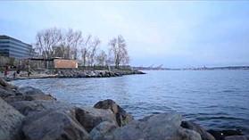 D3300 Sample Video - Elliott Bay