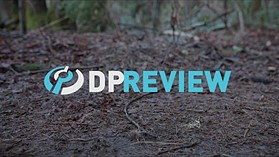 Panasonic Lumix DC-GH5S Log sample footage by DPReview.com